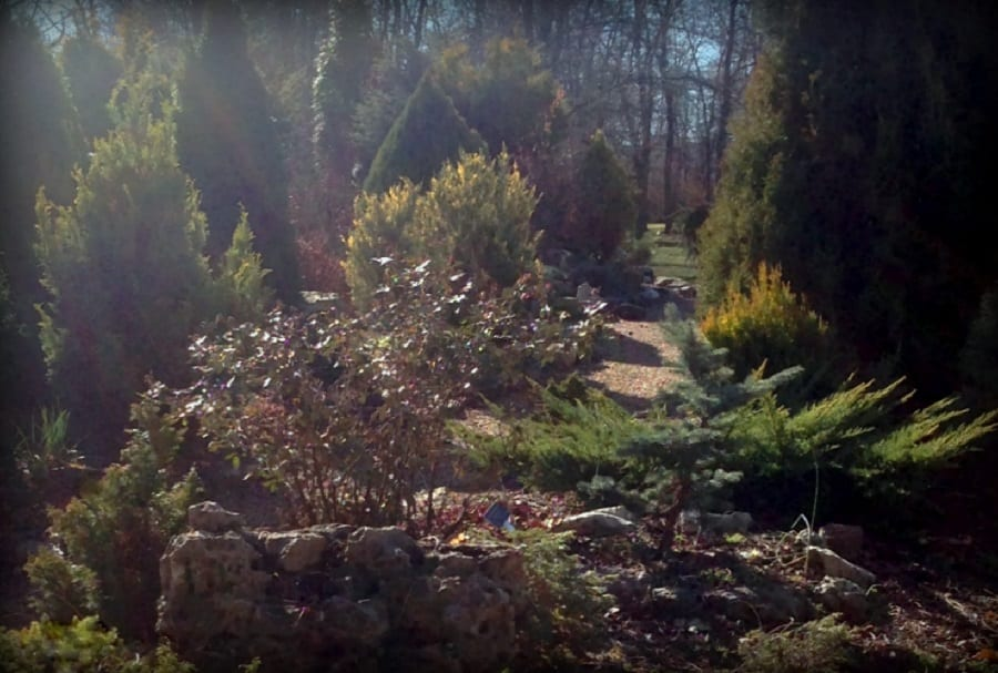 2018 Learn to Grow in the Garden Series: Creating A Garden Sanctuary |  Friends of the Garden