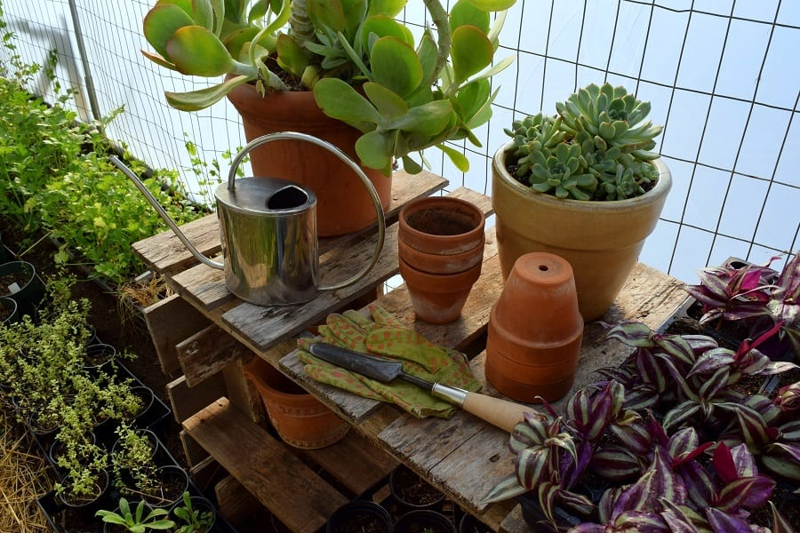 Potting shed shelf or table