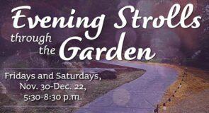 Mizumoto Japanese Stroll Garden sets inaugural winter hours to meet public demand